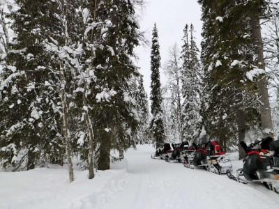 Lapland Getaway: Luosto